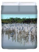 149838-egrets Feeding, Everglades Nat Park  Duvet Cover