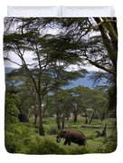 Elephant   #0068 Duvet Cover