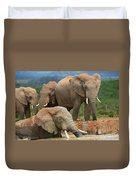 Elephant Bath Duvet Cover