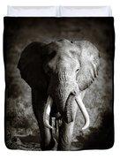 Elephant Bull Duvet Cover