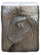 Elephant Eye Chiang Mai, Thailand Duvet Cover