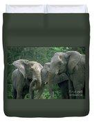 Elephant Ladies Duvet Cover