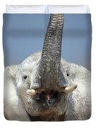 Elephant Portrait Duvet Cover