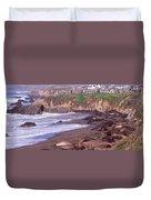 Elephant Seals On The Beach, San Luis Duvet Cover