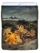 Eleven-armed Sea Stars At Low Tide Duvet Cover