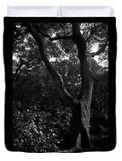 Elizabethan Gardens Tree In B And W Duvet Cover