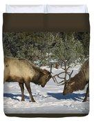 Elk  Bulls Fighting In Yellowstone Duvet Cover