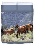 Elk Family - Yellowstone N P Duvet Cover