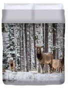 Elk In Jasper Duvet Cover