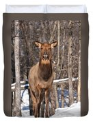 Elk Pictures 50 Duvet Cover