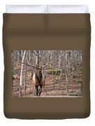 Elk Pictures 86 Duvet Cover