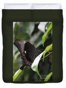Emerald Peacock Swallowtail Butterfly #6 Duvet Cover