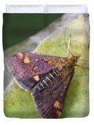 Emperor Moth Duvet Cover