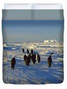 Emperor Penguin Group Walking On Ice Duvet Cover