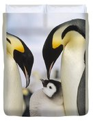 Emperor Penguin Parents With Chick Duvet Cover