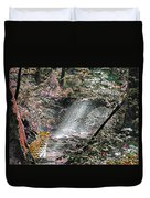 Enchanted Forest - Featured In Wildlife Group Duvet Cover