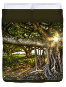 Enchantment Duvet Cover by Debra and Dave Vanderlaan
