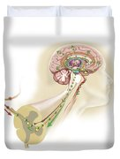 Endorphins Released In The Hypothalamus Duvet Cover