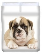 English Bulldog Puppy Duvet Cover