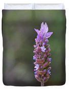 English Lavender Duvet Cover by Rona Black