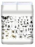Entomology Myriapoda And Arachnida  Duvet Cover