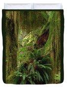Epiphytic Sword Fern Duvet Cover