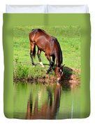 Equine Reflections Duvet Cover