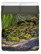 Ethiopian Mountain Vipers Duvet Cover