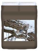 Eurasian  Collard Doves Duvet Cover