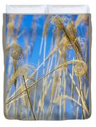 Eulalia Grass Native To East Asia Duvet Cover