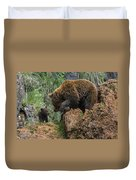 Eurasian Brown Bear 13 Duvet Cover