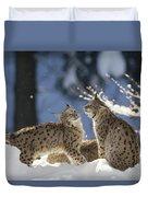 Eurasian Lynx Pair Bayerischer Wald Np Duvet Cover