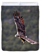 European Flying Sea Eagle 4 Duvet Cover