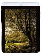 Evening Beech Duvet Cover