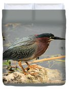 Everglades Green Heron Duvet Cover