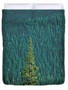 Evergreen Trees Duvet Cover