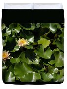 Exotic Colored Waterlilies In The Hot Mediterranean Sun Duvet Cover
