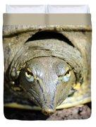 Eye Liner Turtle 8494 Duvet Cover