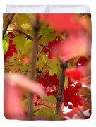 Fall 08-007 Duvet Cover