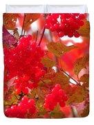 Fall 08-008 Duvet Cover