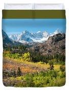 Fall Aspen Below The Sierra Crest Duvet Cover