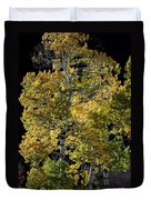 Fall Aspen Duvet Cover