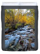 Fall At Big Pine Creek Duvet Cover