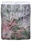 Fall At Cades Cove Duvet Cover by Todd Blanchard