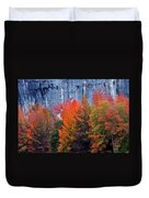 Fall At Steele Creek Duvet Cover