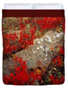 Fall Blueberries And Moss-h Duvet Cover
