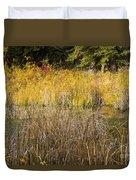 Fall Color At Banff Spring Basin Duvet Cover