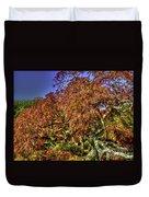Fall Color At Biltmore Duvet Cover