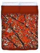 Fall Colors 2014-10 Duvet Cover