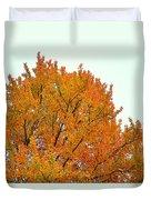 Fall Colors 2014-11 Duvet Cover